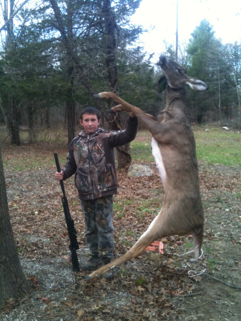 Doe Taken with Bow